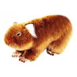 Tina Wombat Plush Toy, Bocchetta Plush Toys