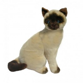 Siamese Cat Tulip Plush Toy by Bocchetta