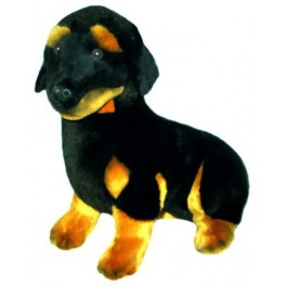 Dachshund Bashful Plush Toy