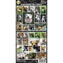 Staffordshire Bull Terrier 27 Assorted Stickers