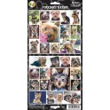 Yorkshire Terrier 27 Assorted Stickers