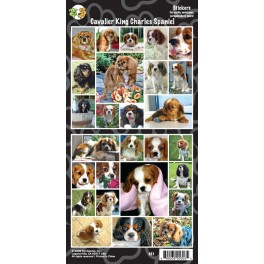 Pack of 27 Cavalier King Charles Assorted Stickers