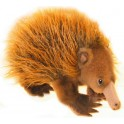 Harry Echidna Plush Toy, Bocchetta Plush Toys