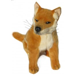 Byron Dingo Plush Toy, Bocchetta Plush Toys