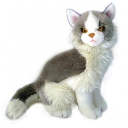 Cat Norwegian Missy by Bocchetta