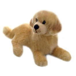 Golden Retriever Honey Plush Toy