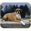 Boxer on Path Mouse Pad