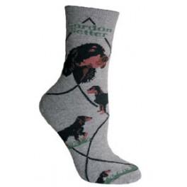 Gordon Setter Socks