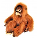 Orangutan Cha Cha Plush Toy