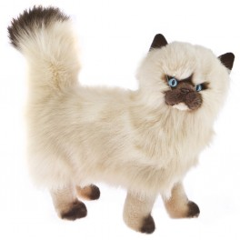 Primrose Himalayan Plush Toy Cat