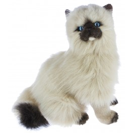 Toffee Himalayan Cat Plush Toy Cat