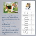 Beagle List Pad