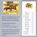 Horse Two Running in Field List Pad