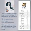 Cavalier King Charles Spaniel Tricolour List Pad