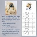 Pekingese List Pad