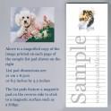 White Poodle List Pad