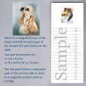 Cocker Spaniel List Pad