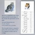 Grey Tabby Cat List Pad