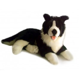 Border Collie Plush Toy - Starsky