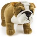 Bulldog Baxter by Bocchetta Plush Toys