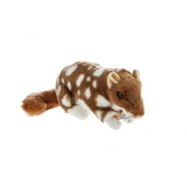 Quoll Spotty Plush Toy