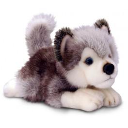 Siberian Husky Plush Dog Storm  by Keel Toys 35cm