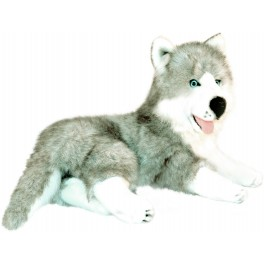 Siberian Husky Madison Plush Toy