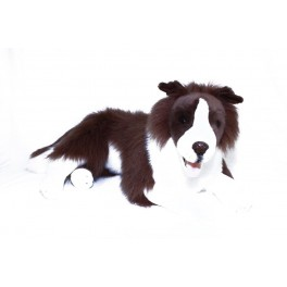 Border Collie Fudge Plush Toy by Bocchetta Plush Toys, $7.95 Postage