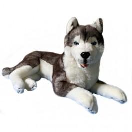 Siberian Husky Rocco Plush Toy $7.95 Postage Aust Wide!!!
