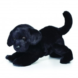 Black Labrador Large