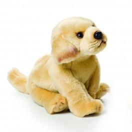 Yellow Labrador Small Nat and Jules